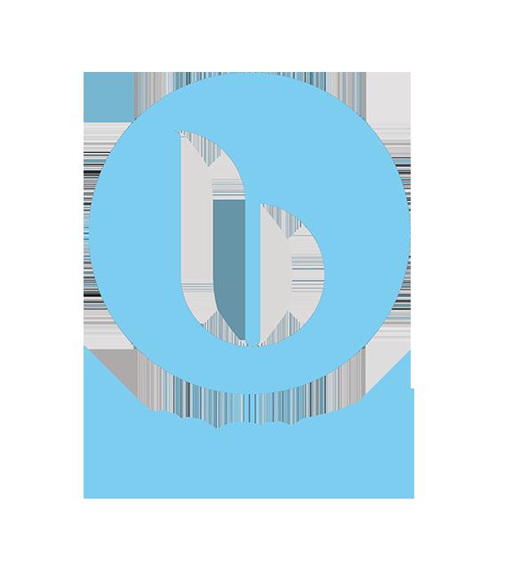 Blu; Blu Sleep; Blu Sleep pillows; Blu Sleep mattresses; Blu Sleep logo